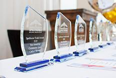 Spelthorne Youth Awards 2019 trophies